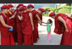 The Kung Fu Nuns: Helping hands, healing hearts in the Himalayas
