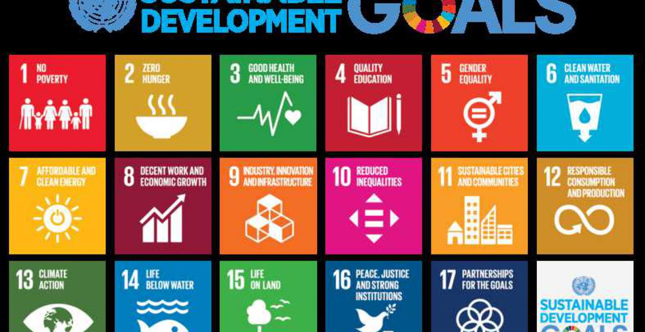Introduction to Sustainable Development Goals (SDGs)